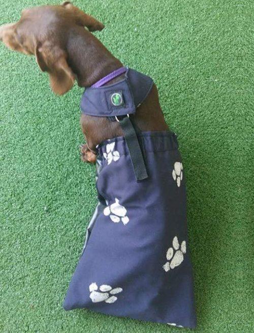 Holistic Pet Drag Bag